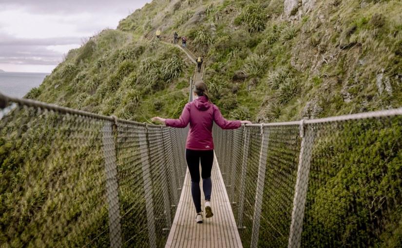 Stairway To Heaven – Paekakariki EscarpmentTrack!